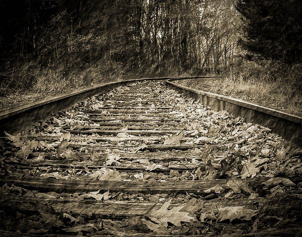 2015-01_PRINT_Info-_TITLE_Sue-Bonacci-Tracks-to-the-Past_END_.jpg