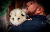 Man's Best Friend, An Opossum