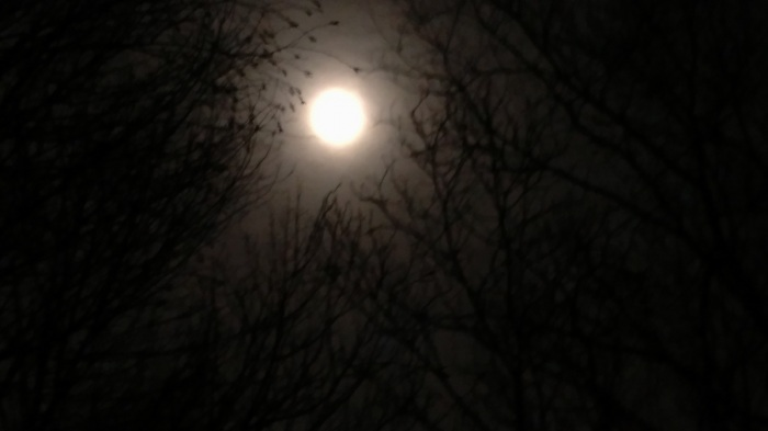 February 2019 Snow Moon