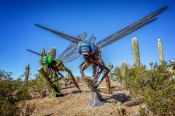 Really Big Bugs in the Desert