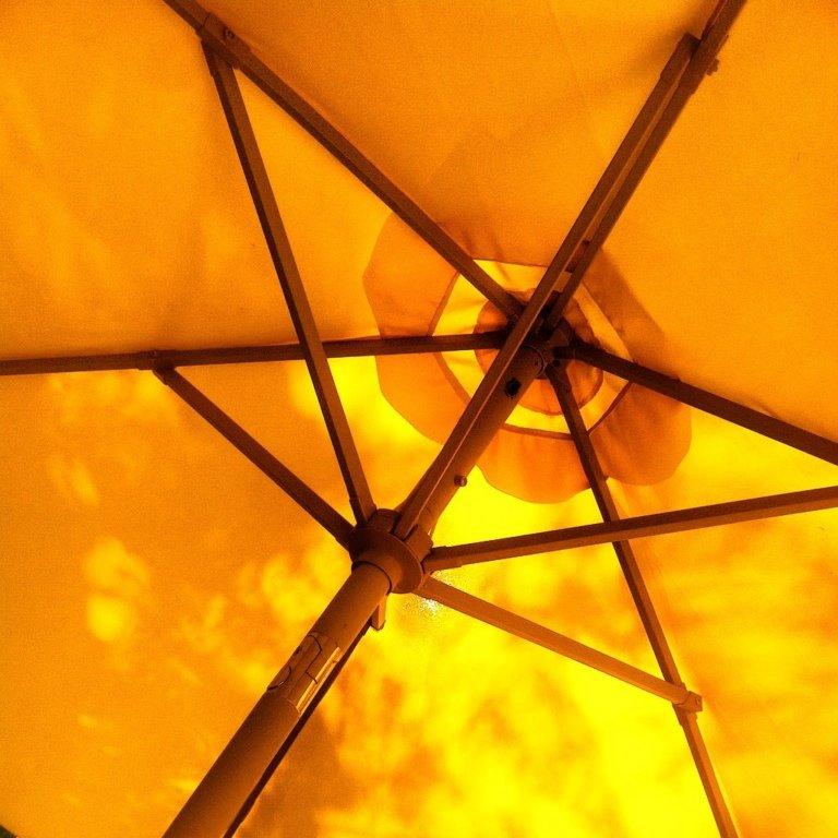 2016-11_DigitalB4_Darcey-Odonoghue_Sunny-day-Umbrella-768x768