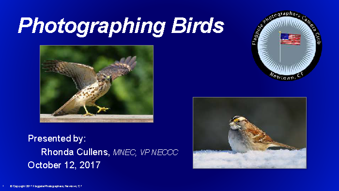Photographing_Birds_by_Rhonda_Cullens_2017-10-12_Page_01