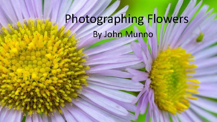 Photographing Flowers - John Munno_Page_01