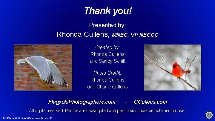 Flagpole-Photographers-Bird-Photography-for-Charter-Oak-Photographic-Society_Page_103