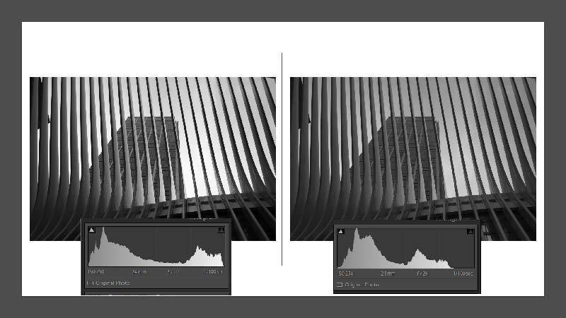 Mark-Ashbolt-Monochrome-24