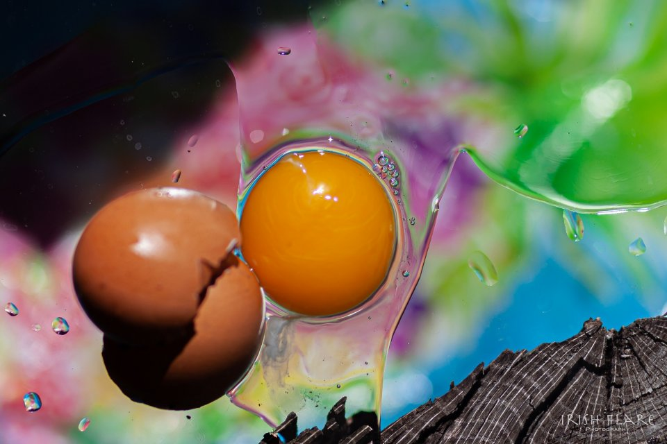 other20200404_scavengerhunt-eggs_q8a0si0_marion-lynott_easteregg