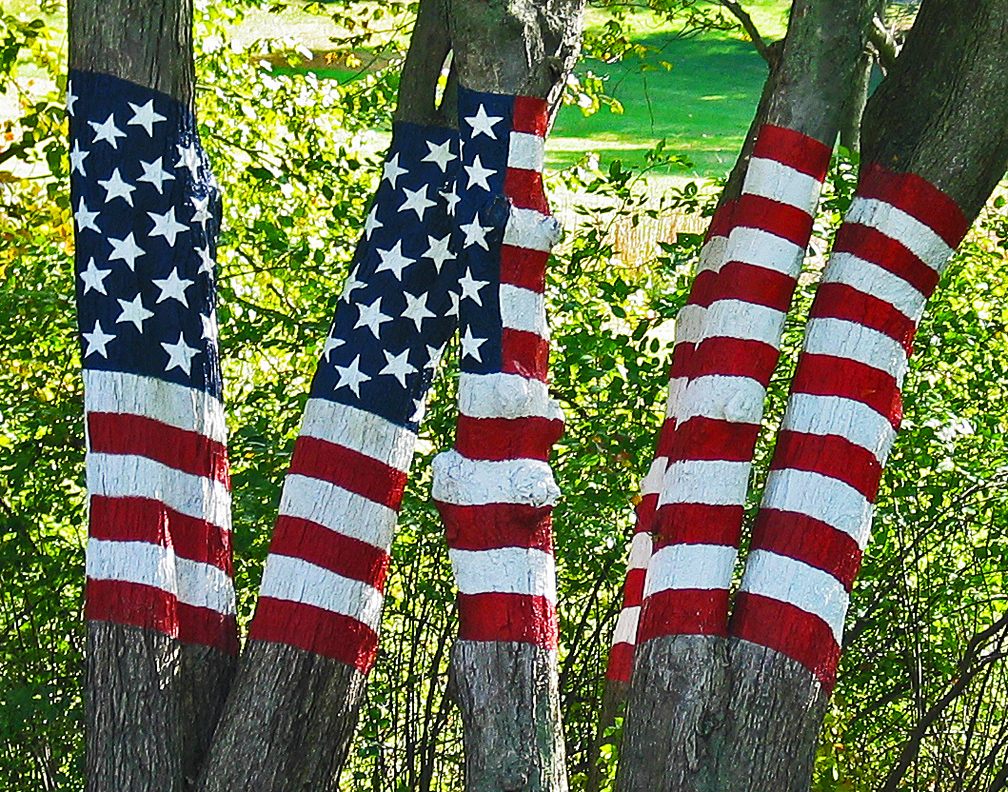 The Flag Among The Trees, Newtown, CT