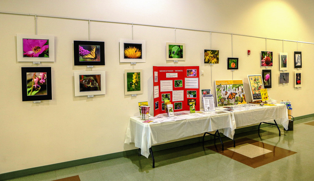 Pollinator Exhibit at Newtown Municipal Center